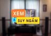 Xem & Suy ngẫm (20/10/2019)