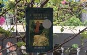 MN1CS: Biên niên sử xứ PAYDAIN