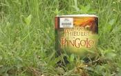 MN1CS: Cuộc phiêu lưu của PINLOGO