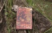 MN1CS: Ngôi làng cổ mộ