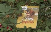 MN1CS: Romeo & Juliet