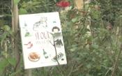 MN1CS: SEOUL Đến và Yêu