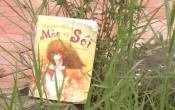 MN1CS: Truyện cổ tích Mèo và Sói