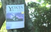 MN1CS: Truyện về Yơxta Becling