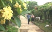Nam Định tôi yêu ( 10/06/2018 )