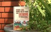 Những cuộc phiêu lưu kỳ diệu của TACTARANH ở TARAXCONG