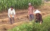 PS Nam Định hoàn thành nhiệm vụ xây dựng nông thôn mới