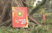 Tết trong đời sống tâm linh người Việt