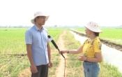 Thời tiết nông vụ ( 23/07/2019 )