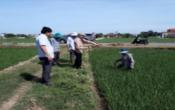 Thời tiết nông vụ ( 27/04/2020 )