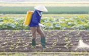 Thời tiết nông vụ ( 29/07/2019 )