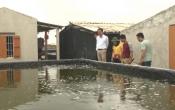 Vùng biển quê tôi: Xã Nam Điền phát huy tiềm năng kinh tế biển