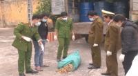Bắt giữ xe tải chở 2 tấn xương, mỡ động vật bẩn, không rõ nguồn gốc từ huyện Hải Hậu đi Hà Nội