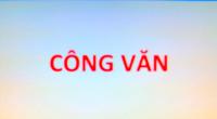 CÔNG VĂN SỞ Y TẾ TỈNH NAM ĐỊNH