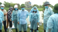 Đồng chí chủ tịch UBND tỉnh kiểm tra công tác phòng, chống bệnh dịch tả lợn Châu Phi tại huyện Nam Trực.