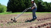 EC hỗ trợ nông dân châu Âu đối phó với hạn hán