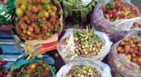 Không thể không có chợ đầu mối ở Việt Nam