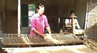 Nghề làm miến xã Giao Tiến, huyện Giao Thủy chuẩn bị phục vụ tết nguyên đán