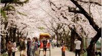 Người Việt thuộc top đi du lịch 'ngắn ngày' nhất thế giới