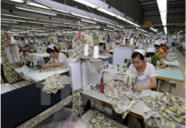 Các doanh nghiệp xuất khẩu sẽ hưởng lợi khi Việt Nam tham gia TPP