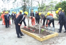 Công ty Điện lực Nam Định tổ chức lễ phát động tết trồng cây đời đời nhớ ơn Bác Hồ xuân Mậu Tuất 2018.