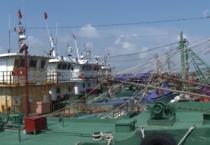 Hội nghị tăng cường các biện pháp cấp bách chống khai thác hải sản bất hợp pháp, không khai báo, không theo quy định