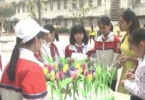 Giáo dục & Phát triển ( 20/03/2019 )
