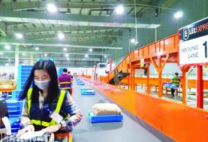 """Logistics Việt: """"Lột xác"""" nhưng còn nhiều điểm nghẽn"""