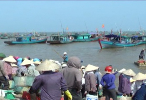 Sản lượng khai thác thủy sản vụ cá Nam năm 2017 của tỉnh Nam Định đạt hơn 27 nghìn tấn, tăng 2,7% so với cùng kỳ năm 2016.